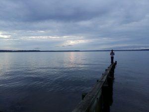 emmy-on-dock